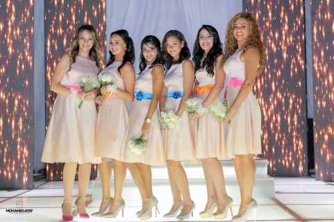 bridemaids-28