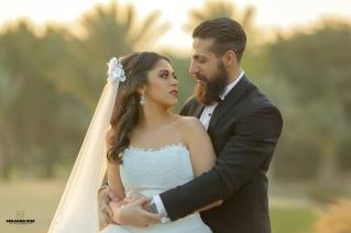 sha3rawy web (8)